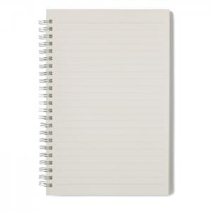 Notes antybakteryjny CLEANBOOK, MO6142-06